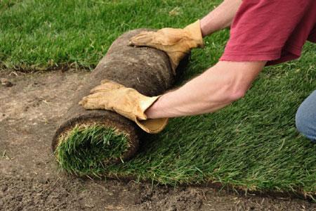 hazır çim uygulama